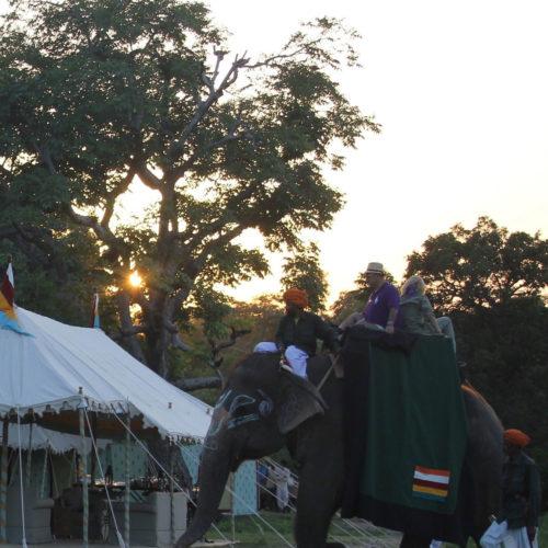 greaves_mountbatten_lodge_elephant_ride