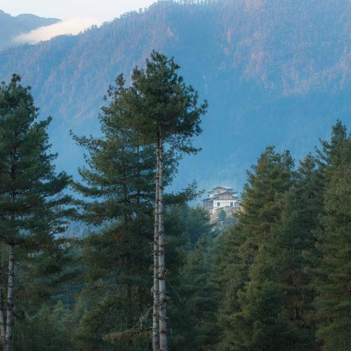 gangtey-lodge-bhutan-view-through-the-trees