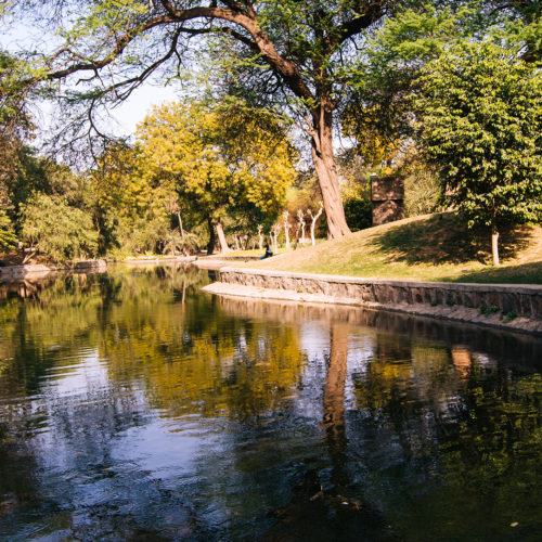 deli gardens