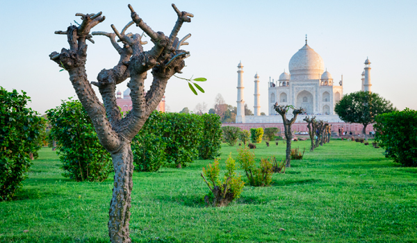 The Mughal-era Mehtab Bagh offers perfect Taj Mahal views © powerofforever/iStock