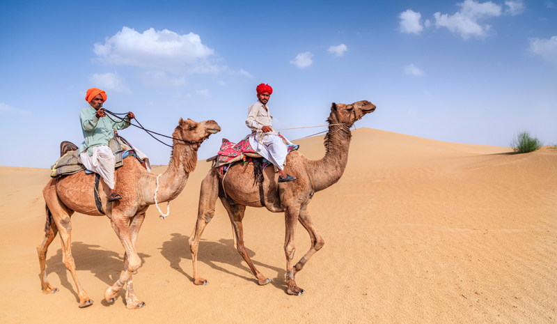 Camels In Rajasthan | Joanna Lumley's India
