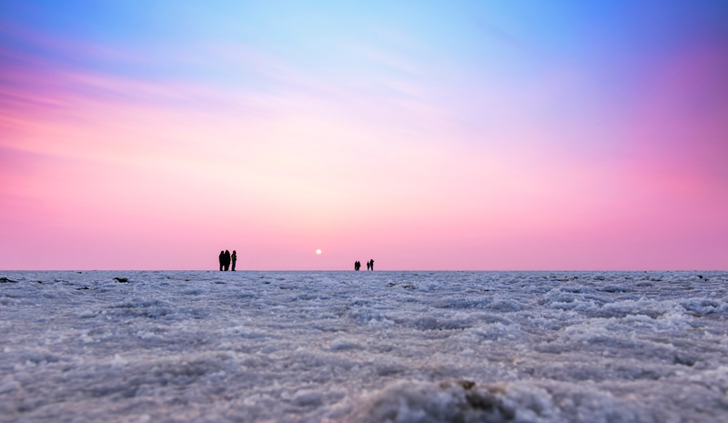 National Parks and Sanctuaries in India   Great Rann Of Kutch