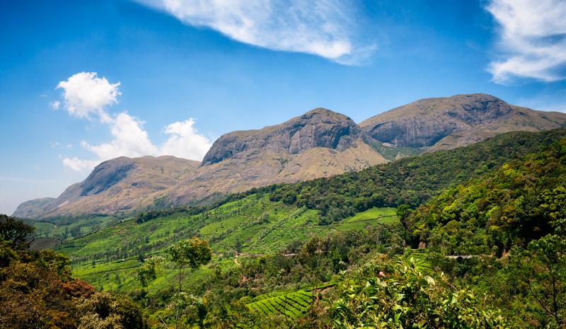 National Parks and Sanctuaries in India   Eravikulam National Park
