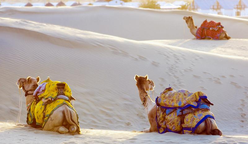 Rajasthan Desert Tour | Rajasthan Desert Festival