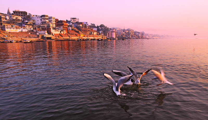 Ganges Travel | Dawn Tour Varanasi
