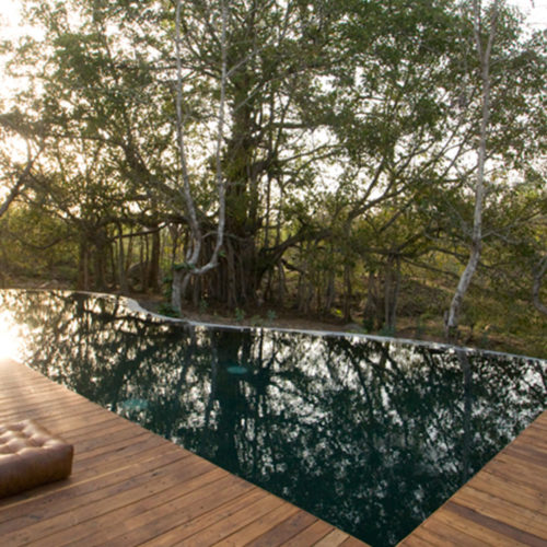 Outdoor swimming pool at Jamtara Wilderness Camp