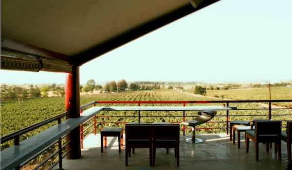 16_day_trip_and_private_excursion_to_indian_wine_country_-_credit_sula_vineyards