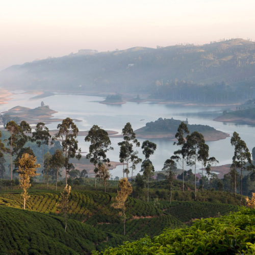 Tea Trails, Sri Lanka