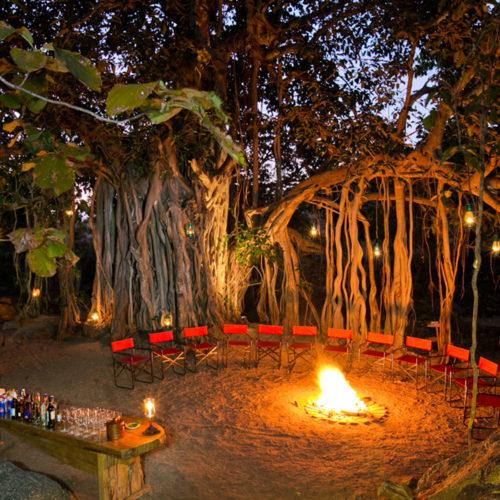 camp fire at jamtara-wilderness-camp-wine