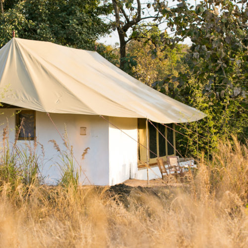 jamtara-wilderness-camp-tent