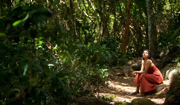 Summer Retreats in Sri Lanka | Living Heritage Koslanda