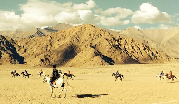 ladakh-trek-_-polo