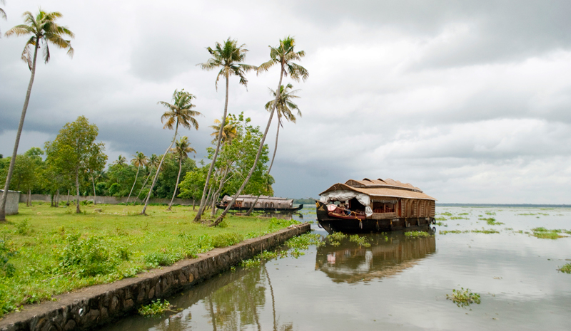 Indian Wellness | Monsoon