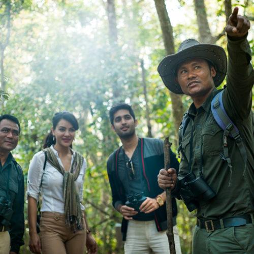 Indian Wellness | Jungle Lodges