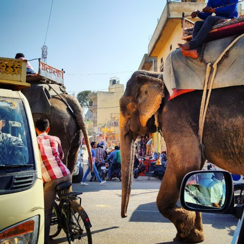 Magic of India