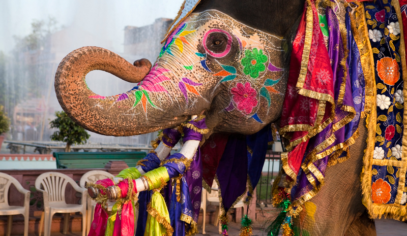 Indian Festivals | Gangaur