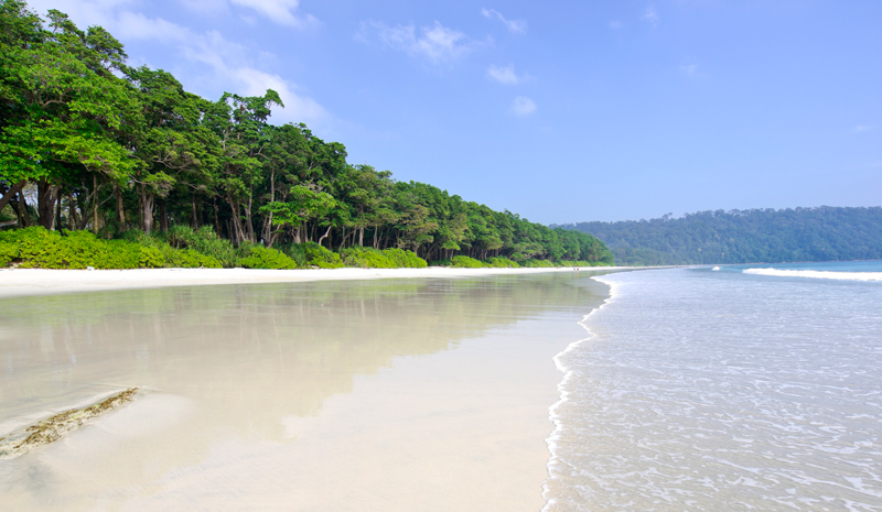 New Year's Eve in India | Andaman Islands