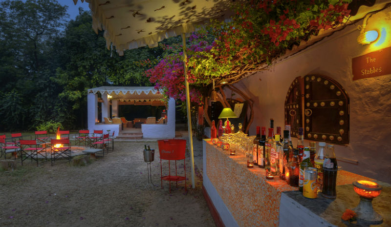Chambal Safari Lodge | Bar