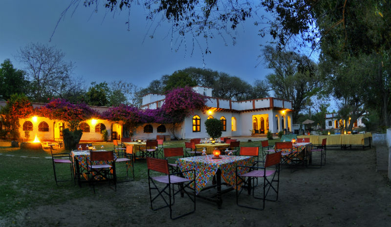 Chambal Safari Lodge | Dining Area