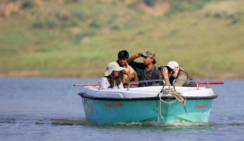 Chambal Safari Lodge | River Safari_