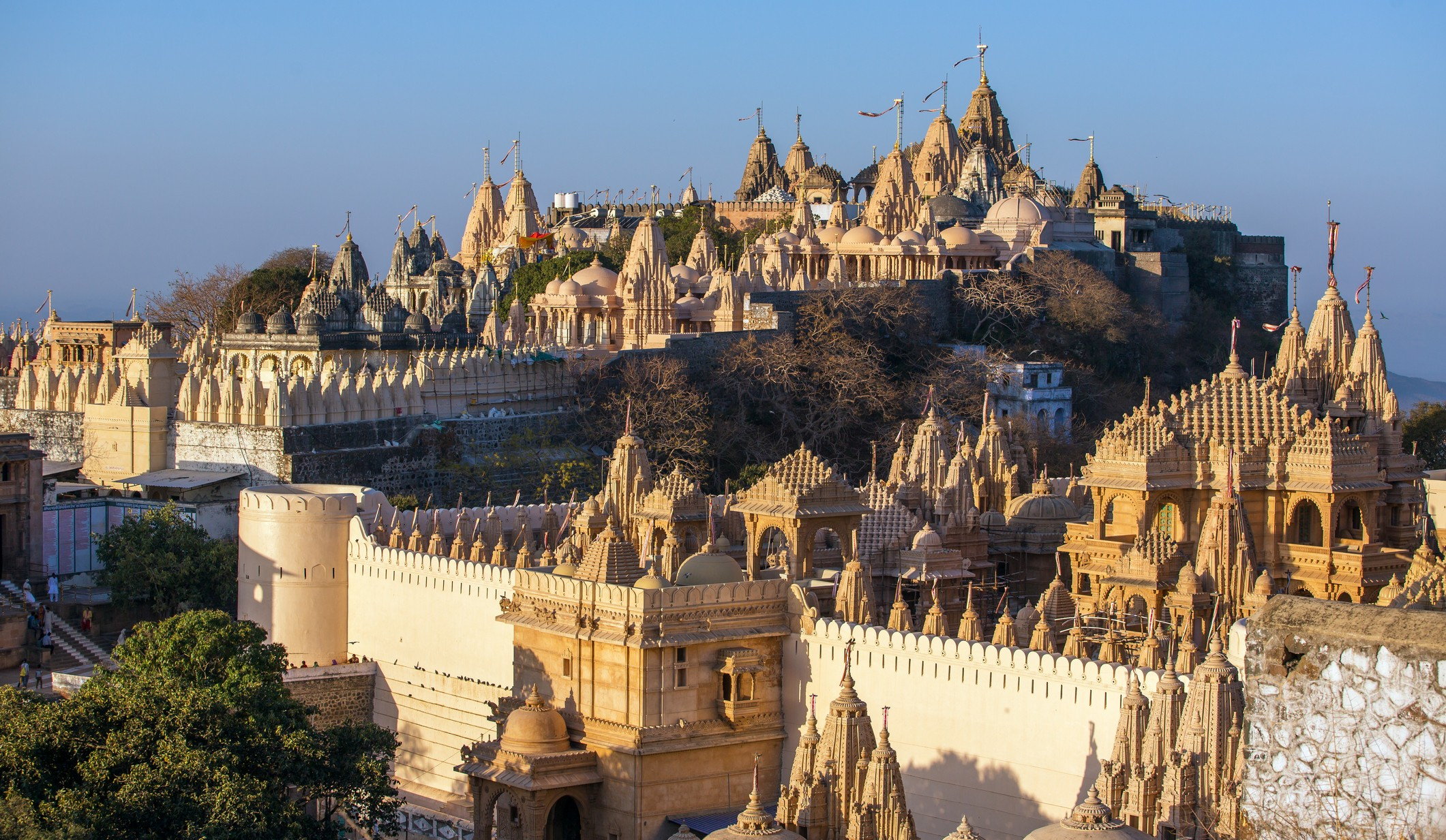 Holiest City in India | Palitana