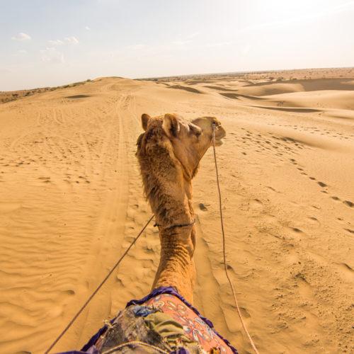 Visit Rajasthan | Thar Desert