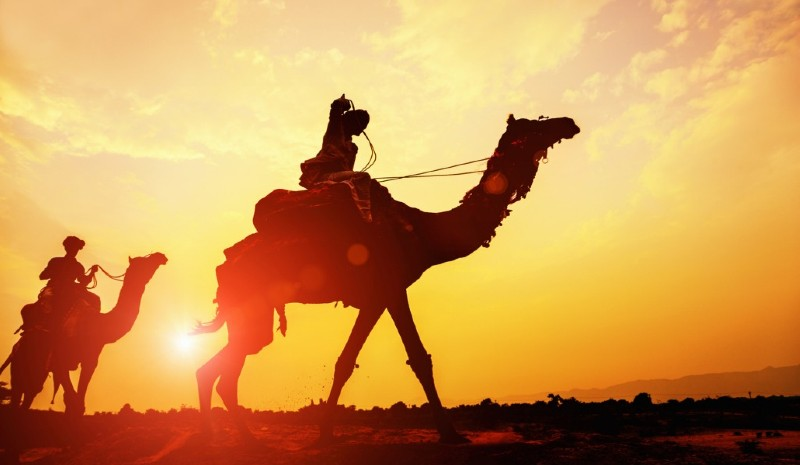 11 Indian Experiences | Desert Safari