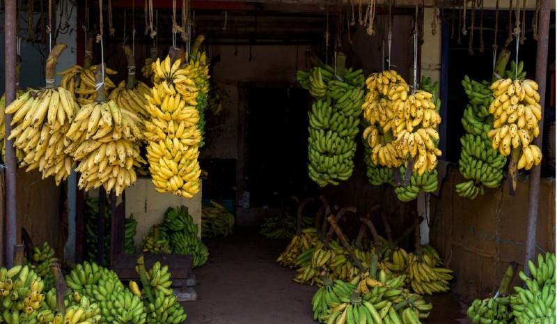 41 Indian Experiences | vegetable market yotrak_iStock